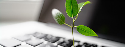 Photograph of a laptop computer with a green leaf plant growing out of the keyboard for efficiency.